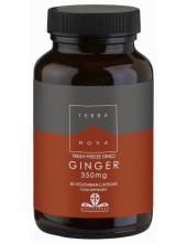 TERRANOVA Ginger 350mg 50 veg.caps