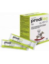 Frezyderm Prodilac Start 10 Sachets