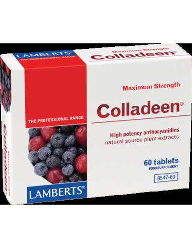 LAMBERTS Colladeen Maximum Strength 60 Tabs