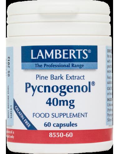 LAMBERTS Pycnogenol 40mg 60 caps